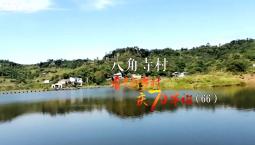 看美丽乡村 庆70华诞丨重庆市永川区南大街街道八角寺村