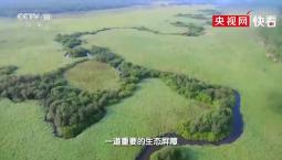 【生态文明@湿地】走进扎龙湿地,一个如诗如画般的地方