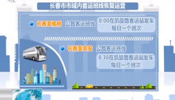 新闻早报|长春市市域内客运班线恢复运营