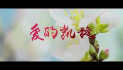 吉林廣播電視臺原創MV《愛的凱旋》