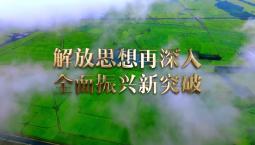 宣传片丨解放思想再深入 全面振兴新突破