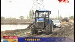 乡村四季12316|中西部稻农插秧忙