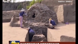 双辽农家院发现古墓 抢救性发掘正在开展