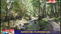 乡村四季12316 林业转型矿区整治 青山绿水变成金山银山