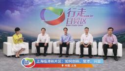 【行走自貿區】云座談上海臨港新片區:如何創新、聚才、興業