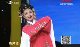 二人转总动员|艺压群雄:王冬晴表演吉剧《桃李梅》