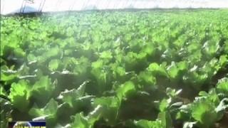 松原:多措并举 促进农民工就业创业