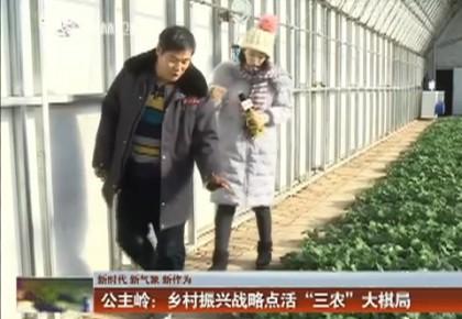 """【新时代 新气象 新作为】公主岭:乡村振兴战略点活""""三农""""大棋局"""