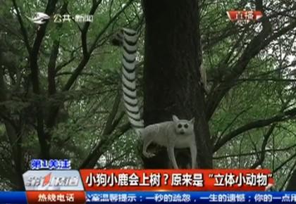 """小狗小鹿会上树?原来是""""立体小动物"""""""