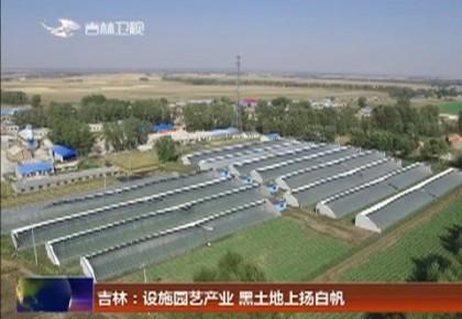 吉林:设施园艺产业 黑土地上扬白帆