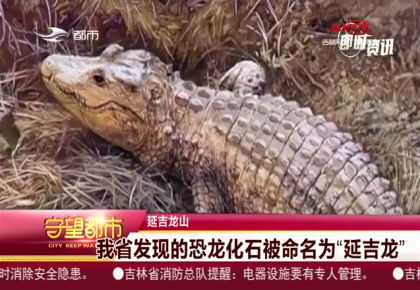 """守望都市 延吉龙山:吉林省发现的恐龙化石被命名为""""延吉龙"""""""