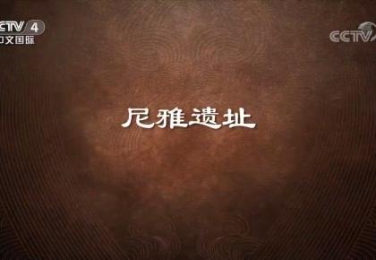 《史话新疆》 第九集 尼雅遗址