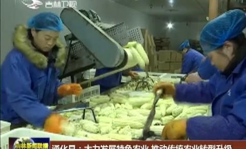 通化县:大力发展特色农业 推动传统农业转型升级