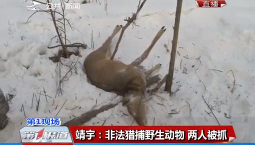 靖宇:非法猎捕野生动物 两人被抓