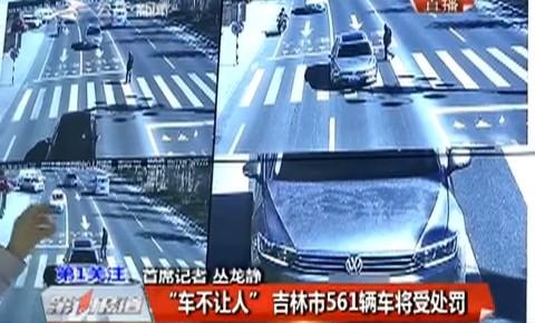 """""""车不让人""""吉林市561辆车将受处罚"""