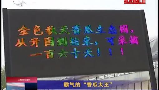 """乡村四季12316_霸气的""""香瓜""""大王"""