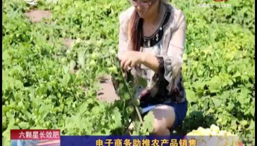 乡村四季12316_电子商务助推农产品销售