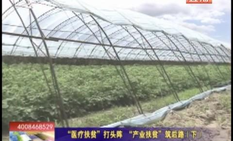 """乡村四季12316_""""医疗扶贫""""打头阵  """"产业扶贫""""筑后路(下)"""