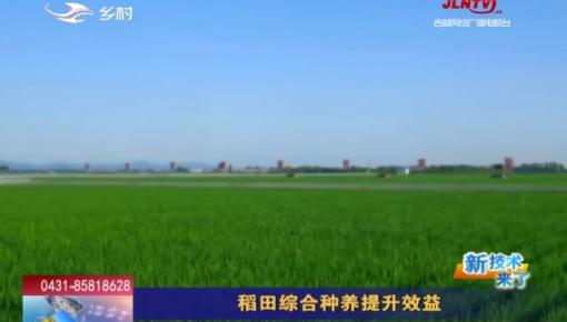 乡村四季12316_稻田综合种养提升效益
