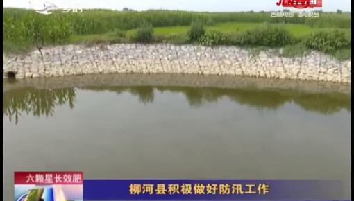 乡村四季12316|柳河县积极做好防汛工作