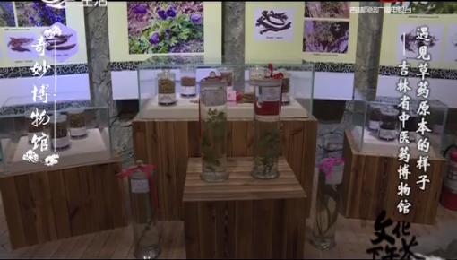 文化下午茶|奇妙博物馆_走进吉林省中医药博物馆 遇见草药原本的样子