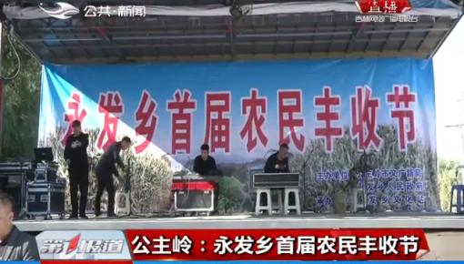 公主岭:永发乡首届农民丰收节