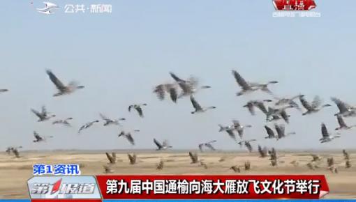 第九届中国通榆向海大雁放飞文化节举行