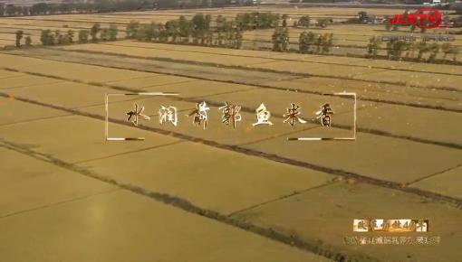 吉林省縣域巡禮微視頻系列|水潤前郭魚米香