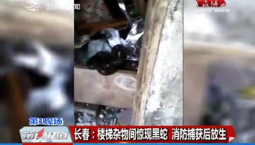 第1报道丨长春:楼梯杂物间惊现黑蛇 消防捕获后放生
