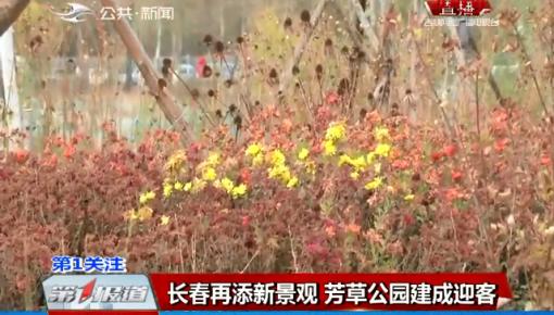 第1报道|长春再添新景观 芳草公园建成迎客