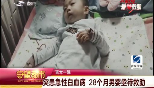 守望都市|28个月男婴突患急性白血病亟待救助
