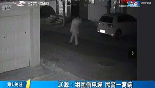 第1报道|辽源:组团偷电缆 民警一窝端