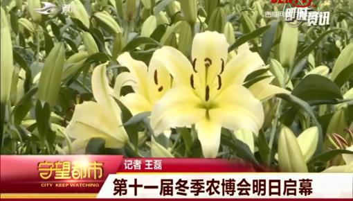 守望都市|长春市:第十一届冬季农博会明日启幕