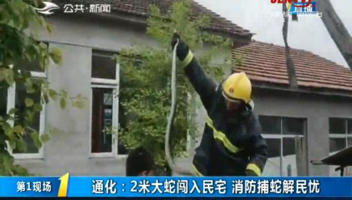 第1報道 通化:2米大蛇闖入民宅 消防捕蛇解民憂