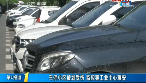第1报道|车停小区被划伤 监控罢工业主心难安