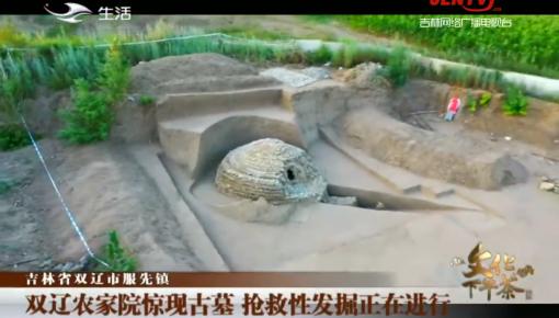 文化下午茶|双辽农家院惊现古墓 抢救性发掘正在进行_2020-08-02