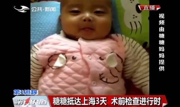 【独家视频】糖糖抵达上海3天 术前检查进行时