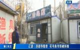 第1报道|辽源:违建存隐患 花鸟鱼市场被拆除