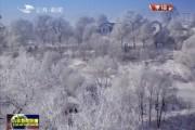 吉林新闻联播_2016-12-08