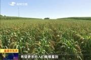 吉林新闻联播_2017-09-23