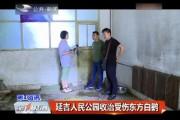 延吉人民公园收治受伤东方白鹳