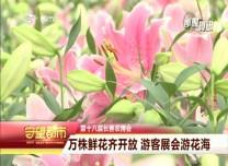 守望都市|长春农博会:万株鲜花齐开放 游客展会游花海