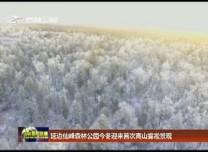 延边仙峰森林公园今冬迎来首次高山雾凇景观