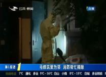 第1報道 馬蜂筑巢為鄰 消防幫忙摘除