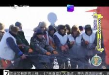7天游记_探秘查干湖冬捕