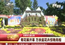 守望都市|长春市儿童公园菊花展开幕 万余盆花卉惊艳亮相