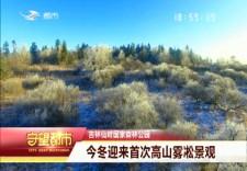 守望万博官网manbetx客户端|万博手机注册仙峰国家森林公园首迎今冬高山雾凇景观