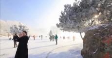 向快乐出发_2017-12-31