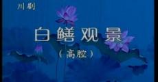 名段欣赏|川剧:《白鳝观景》(高腔)