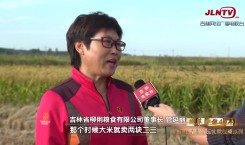 吉林省县域巡礼微视频系列|稻米之乡·柳河 特色产品铺就乡村振兴路